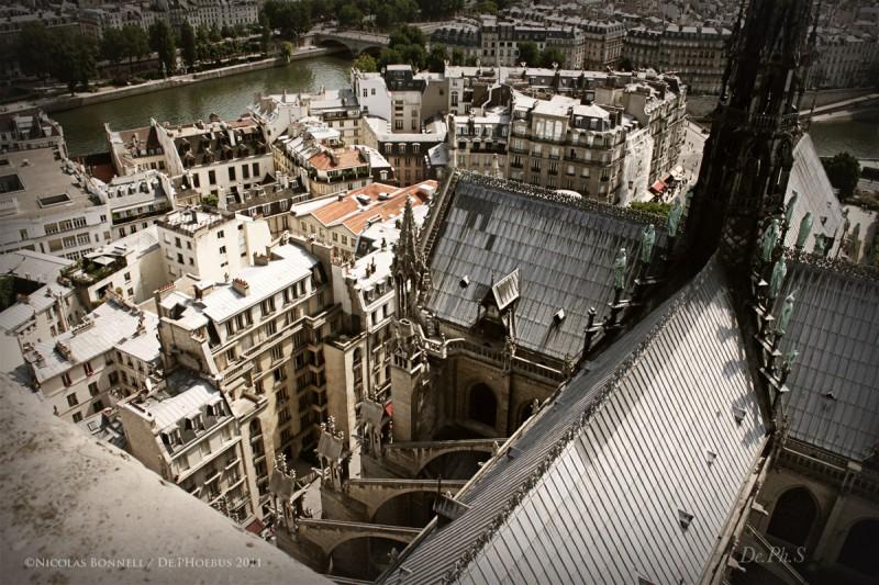 Depuis les hauteurs de Notre Dame