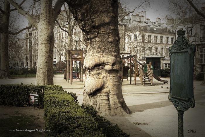 arbre_DePHS2