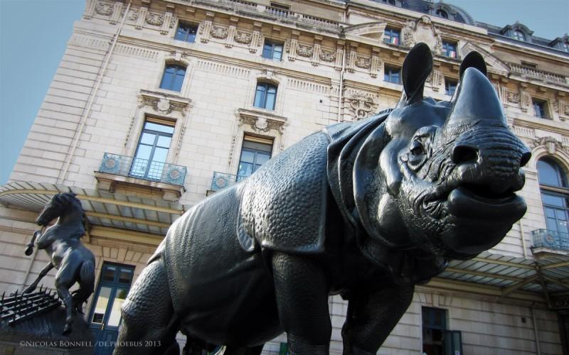Le Rhinocéros ©Nicolas Bonnell / De.Phoebus 2013