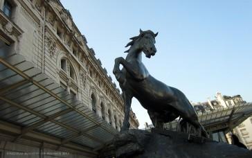 Paris 07 – Le bestiaire du Musée d'Orsay