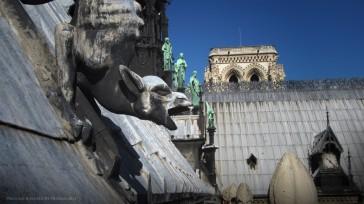 Paris 04 – Notre Dame côté face