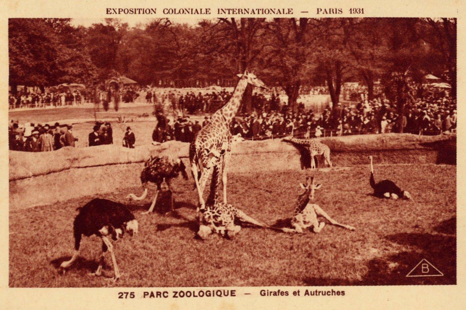 1934 Le Zoo De Vincennes Paris Unplugged