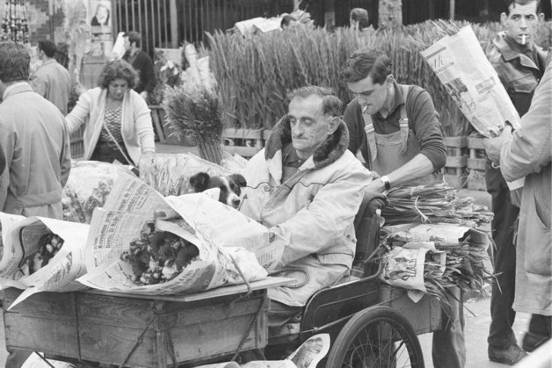 Pavillon des fleurs au marché des halles à Paris 1967 © Aimé Dartus / Ina