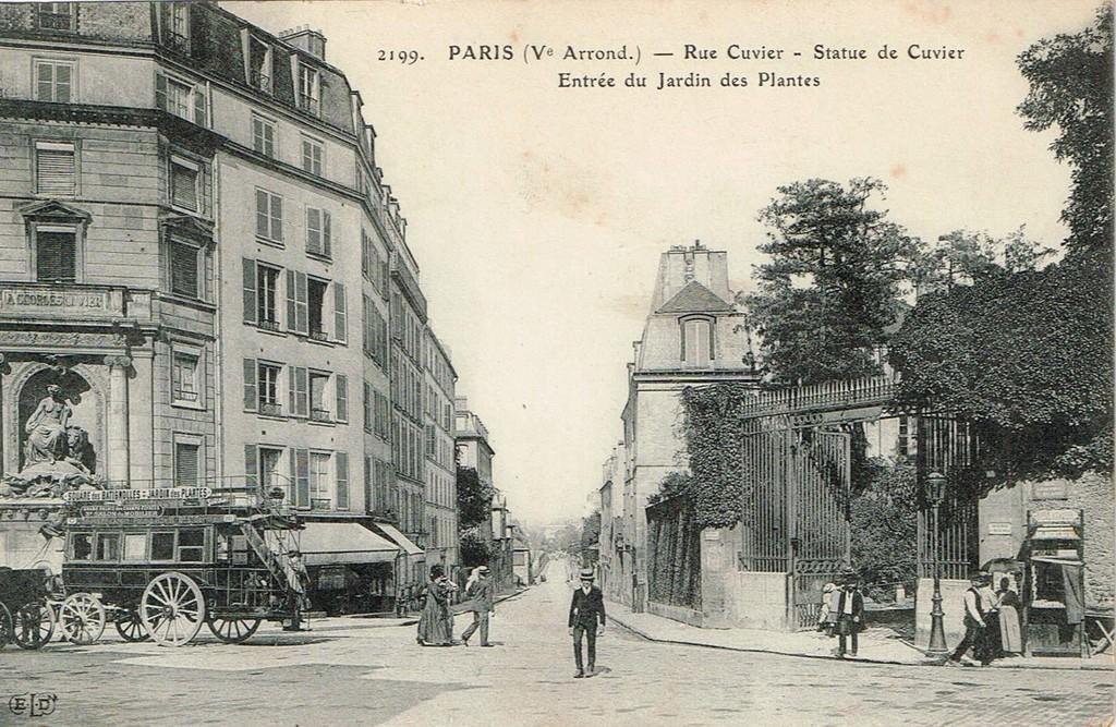Fontaine Cuvier - Cparama